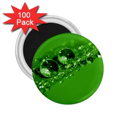 Green Drops 2 25  Button Magnet (100 Pack) by Siebenhuehner