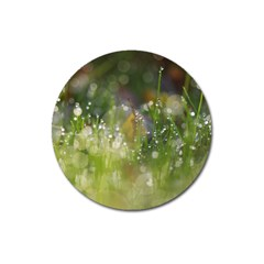 Drops Magnet 3  (round) by Siebenhuehner