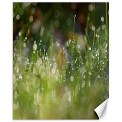 Drops Canvas 16  X 20  (unframed) by Siebenhuehner