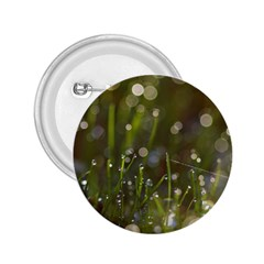 Waterdrops 2 25  Button