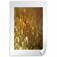 Waterdrops Canvas 24  X 36  (unframed)