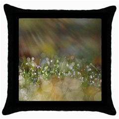 Sundrops Black Throw Pillow Case by Siebenhuehner