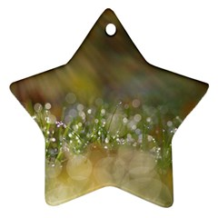 Sundrops Star Ornament (two Sides) by Siebenhuehner