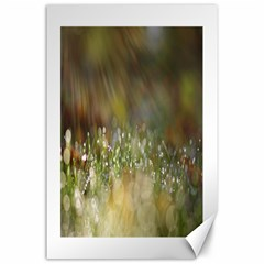 Sundrops Canvas 24  X 36  (unframed) by Siebenhuehner
