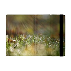 Sundrops Apple Ipad Mini Flip Case by Siebenhuehner