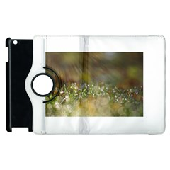 Sundrops Apple Ipad 2 Flip 360 Case by Siebenhuehner