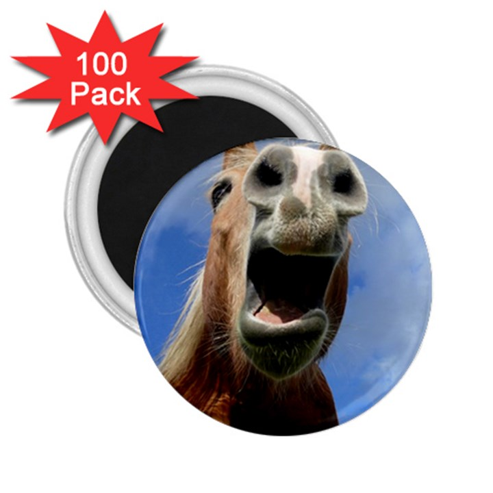 Haflinger  2.25  Button Magnet (100 pack)