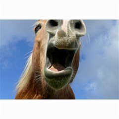 Haflinger  Canvas 12  X 18  (unframed)