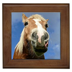 Haflinger  Framed Ceramic Tile by Siebenhuehner