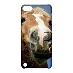 Haflinger  Apple Ipod Touch 5 Hardshell Case With Stand by Siebenhuehner