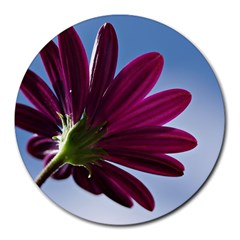 Daisy 8  Mouse Pad (round) by Siebenhuehner