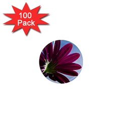 Daisy 1  Mini Button Magnet (100 Pack) by Siebenhuehner