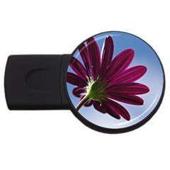 Daisy 2gb Usb Flash Drive (round) by Siebenhuehner
