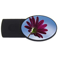 Daisy 2gb Usb Flash Drive (oval) by Siebenhuehner