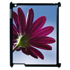 Daisy Apple Ipad 2 Case (black) by Siebenhuehner