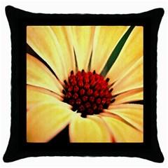 Osterspermum Black Throw Pillow Case by Siebenhuehner
