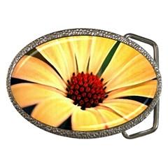 Osterspermum Belt Buckle (oval) by Siebenhuehner