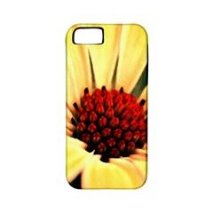 Osterspermum Apple Iphone 5 Classic Hardshell Case (pc+silicone) by Siebenhuehner
