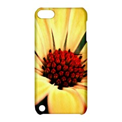 Osterspermum Apple Ipod Touch 5 Hardshell Case With Stand by Siebenhuehner