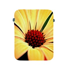Osterspermum Apple Ipad 2/3/4 Protective Soft Case by Siebenhuehner