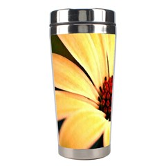 Osterspermum Stainless Steel Travel Tumbler by Siebenhuehner
