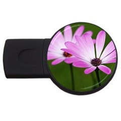 Osterspermum 4gb Usb Flash Drive (round) by Siebenhuehner