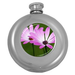 Osterspermum Hip Flask (round) by Siebenhuehner