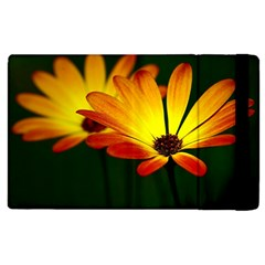 Osterspermum Apple Ipad 2 Flip Case by Siebenhuehner