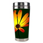 Osterspermum Stainless Steel Travel Tumbler Right