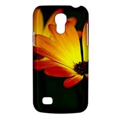 Osterspermum Samsung Galaxy S4 Mini Hardshell Case  by Siebenhuehner