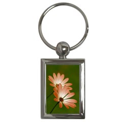 Osterspermum Key Chain (rectangle) by Siebenhuehner