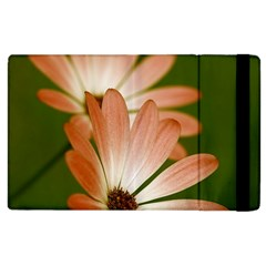 Osterspermum Apple Ipad 3/4 Flip Case by Siebenhuehner