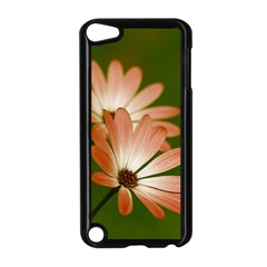 Osterspermum Apple Ipod Touch 5 Case (black) by Siebenhuehner