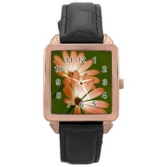 Osterspermum Rose Gold Leather Watch  by Siebenhuehner