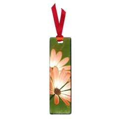 Osterspermum Small Bookmark by Siebenhuehner
