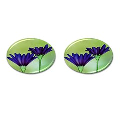 Osterspermum Cufflinks (oval) by Siebenhuehner