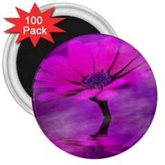 Osterspermum 3  Button Magnet (100 Pack) by Siebenhuehner