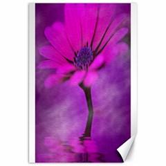 Osterspermum Canvas 20  X 30  (unframed) by Siebenhuehner