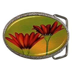 Osterspermum Belt Buckle (oval) by Siebenhuehner
