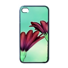 Osterspermum Apple Iphone 4 Case (black) by Siebenhuehner
