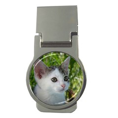 Young Cat Money Clip (round)