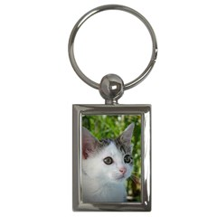 Young Cat Key Chain (rectangle) by Siebenhuehner