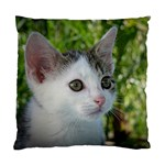 Young Cat Cushion Case (Single Sided)
