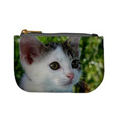 Young Cat Coin Change Purse by Siebenhuehner