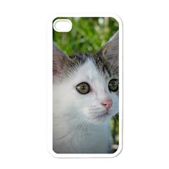 Young Cat Apple Iphone 4 Case (white) by Siebenhuehner