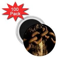 Chain 1 75  Button Magnet (100 Pack) by Siebenhuehner