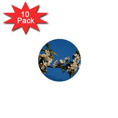 Cherry Blossom 1  Mini Button (10 Pack)