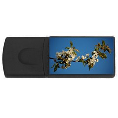 Cherry Blossom 4gb Usb Flash Drive (rectangle) by Siebenhuehner