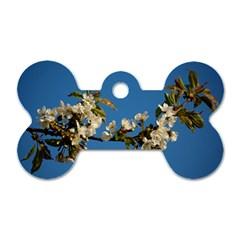 Cherry Blossom Dog Tag Bone (two Sided) by Siebenhuehner