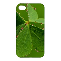 Drops Apple Iphone 4/4s Premium Hardshell Case by Siebenhuehner
